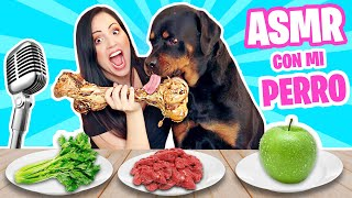 ASMR CON MI PERRO! 😅 COME DE TODO!!! 😱 Sandra Cires Art ft KARIM 🔥 Dog Rottweiler Reviewing Food 🔥