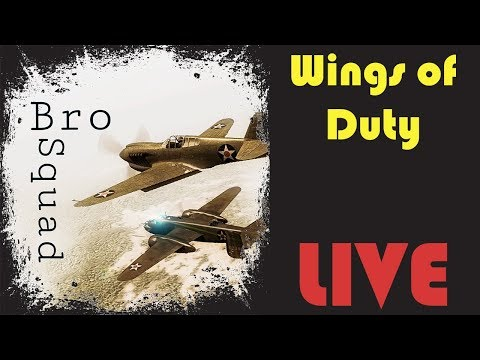 Wings of Duty P40E Formation on Pearl Harbor | LIVE