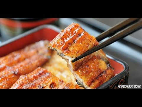 Food in Japan Unagi Eel in Japan Japanology   (ウナギ) 日本鰻