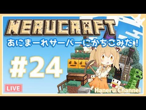 【Minecraft】あにまーれサーバーにカチコミじゃ~!【因幡はねる / あにまーれ】