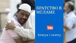 Братство в Исламе