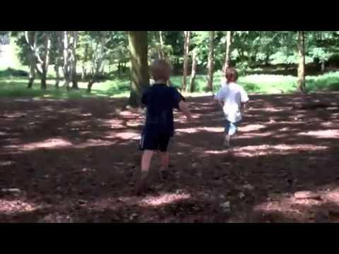 Robin Hood and Little John (Oo-De-Lally Acoustic Cover)