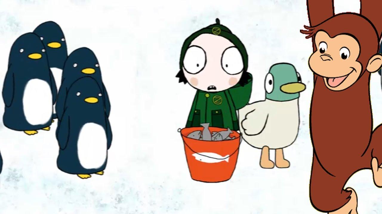 Jorge el Curioso - Juega con Sarah y Pato a alimentar pingüinos ...