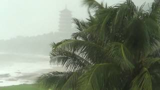 видео Когда лучше всего ехать в Китай: туристический сезон