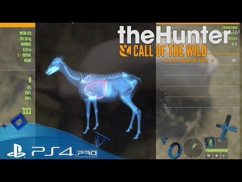 TheHunter: Call of the Wild PS4 🇩🇪 - Heute klappt alles - Let´s Play Deutsch