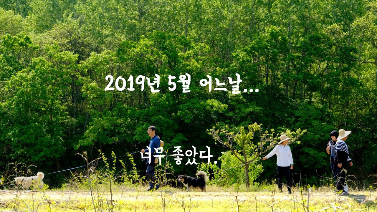 2019 청소년 길찾기 프로젝트 소감 #1