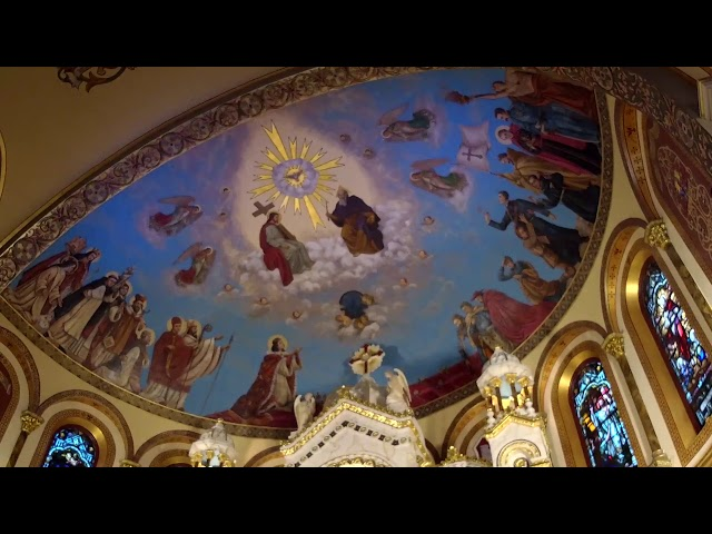 XXIV Sunday in Ordinary Time