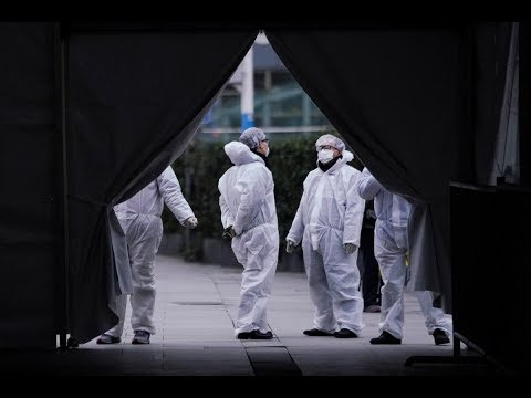Коронавирус данные на 10 февраля 2020г. Китайский вирус на 10.02.2020
