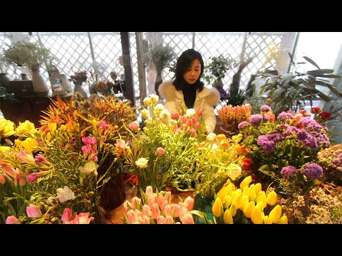 Valentine's Day brings business to flower auctions