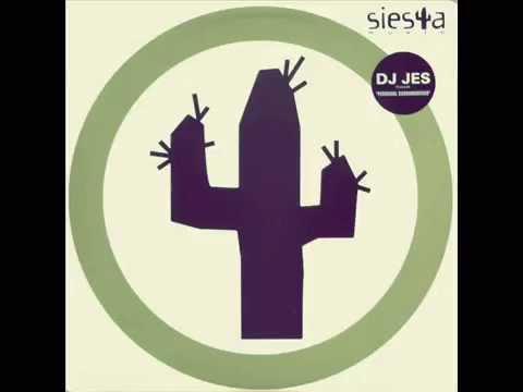 DJ Jes - Stella's Scat
