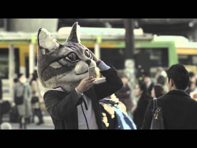 gypsy-the-cat-inside-your-mind-alsatianmusic