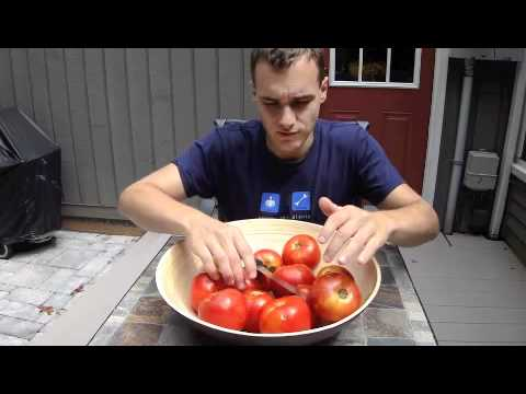 """Normal Eating"" - A Meal of 12 Delicious Tomatoes"