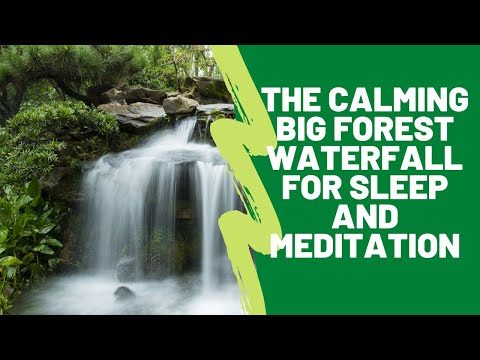 The calming big forest waterfall for sleep and meditation. (1 hour) White Noise for sleep.