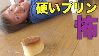 冷凍プリンが落下したその後のテオくん 吉田亜咲 動画 7