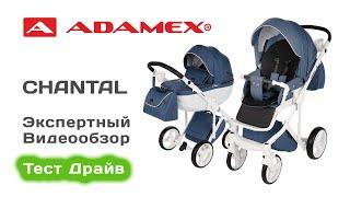 adamex Chantal коляска 2 в 1 выбираем с экспертом на Тест Драйве