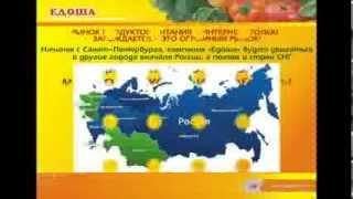 видео Пошаговое рукводство: бизнес на автостраховании