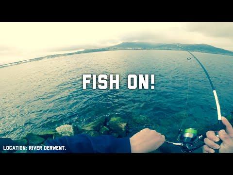 Chasing Runners... Accepting Salmon. || Fishing Tasmania 2019: River Derwent
