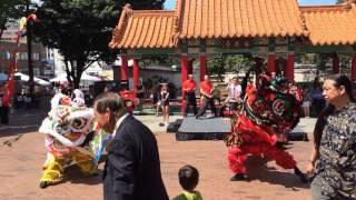 "Dragon Fest 2014 西雅图中国城""龙节""舞狮表演"