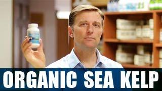 Organic Sea Kelp (Icelandic)