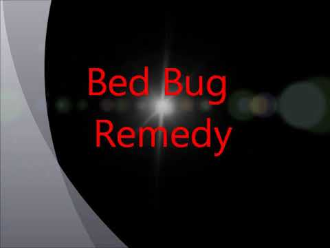 for bug bed bugs make you free effective home to index remedies completely