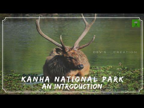 KANHA NATIONAL PARK : LARGEST NATIONAL PARK OF MADHYA PRADESH