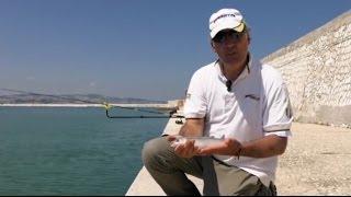 Pescata a Feeder al porto di Ancona