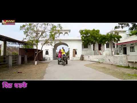 Love Song Rani Rangili 2019 Maro Dil Dhadke Rahul Surawat Like Please Subscribe Thank You