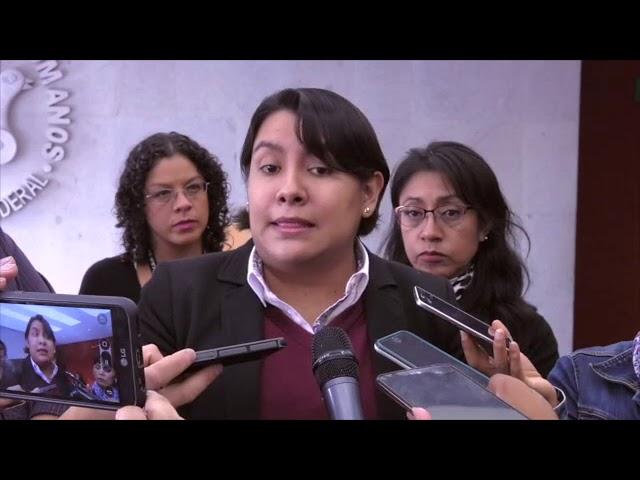 Entrevista a la Dra. Perla Gómez al término de la presentación de las Recomendaciones 6  y 7/2017
