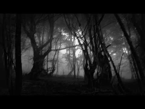 Elysian blaze - Celestial Mourning Beneath a Forgotten Sky