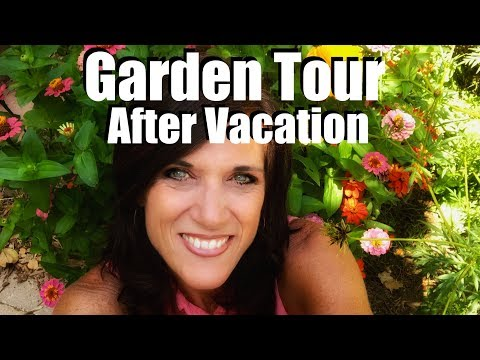Garden Tour - The State of the Garden After Vacation: Assess and Prioritize - 동영상