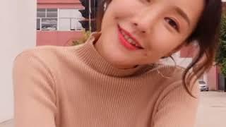 [해외직구] 반폴라 니트 여 긴팔 이너 이너 2019 …