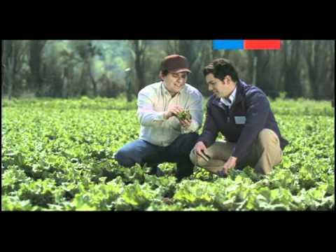 Seguro Agrícola 2  - Ministerio De Agricultura