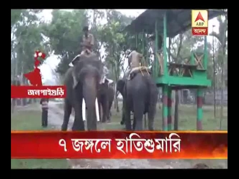 Elephant census starts in North bengals 7 forests