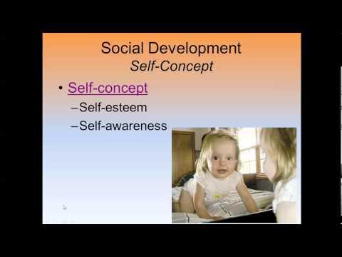 Social Development and Gender Roles 3