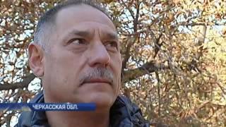Мусор из Львова незаконно сбросили в Каневе(, 2016-10-14T18:45:19.000Z)