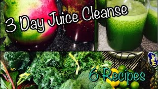 3 Day Juice Cleanse!! | 6 Juice Recipes!!