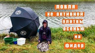Рыбалка на Вилейском водохранилище Ловля не активной плотвы фидером осенью на водохранилище