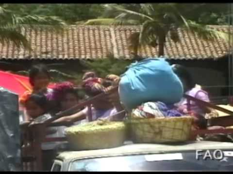 Women Feed the World: Latin America and the Caribbean