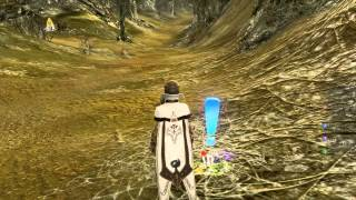Archeage Online mmorpg how to transfer items and money between servers