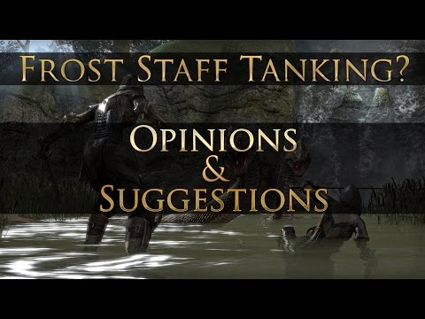 [PTS] Frost Staff Tanking: Opinions & Suggestions