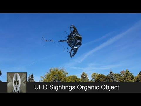 UFO Sightings Organic Object February 26th 2017