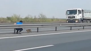 Man Risks Life To Save Abandoned Dog Stranded In The Middle Of Busy Highway