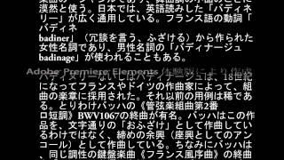 j s バッハ 管弦楽組曲第2番 ロ短調 bwv1067 より 第7曲 バディネリ