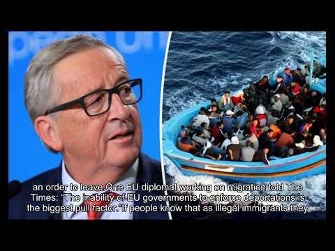 'Failing EU enticing economic migrants' as almost three quarters remain despite rejection