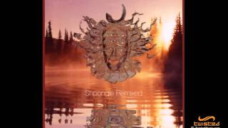 Shpongle - Dorset Perception Total Eclipse Remix