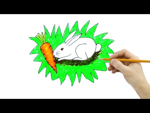Vẽ Tranh Con Thỏ - How To Draw The Rabbit