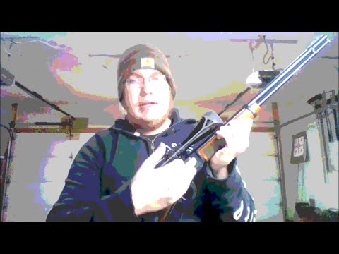 Does owning a gun make you a Coward?