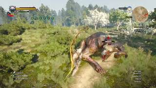 The Witcher 3: Wild Hunt – Complete Edition_20190223151618