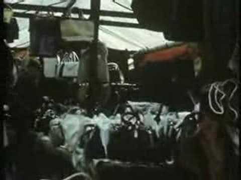 Newcastle-under-Lyme Market 1960's