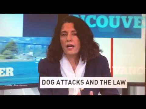 Dog attack near Vancouver B.C. June 2017. Commentary by Vancouver law pr V. Victoria Shroff on CBC